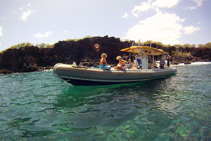 Maui Adventure Whale Watch Cruise