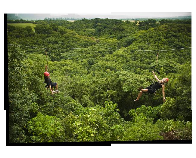 Kipu Falls Zipline Safari image 3