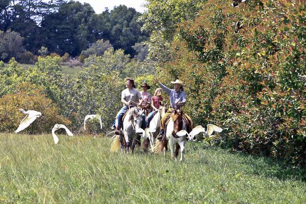 Product Princeville Paniolo Horseback Ride