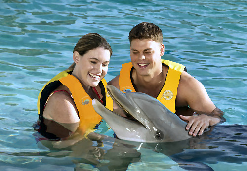 Product Dolphin Encounter 1:45PM