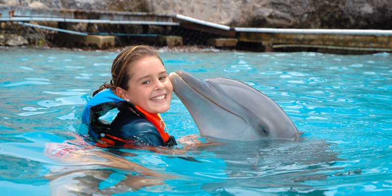 Product Dolphin Encounter 11:00AM