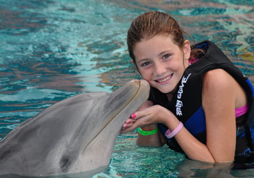 Dolphin Encounter 11:00AM