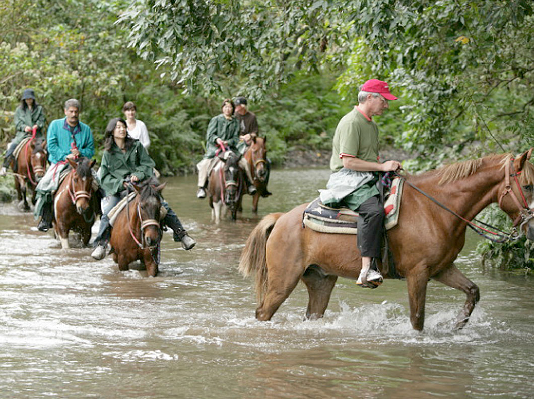 Waipio Valley Afternoon Horseback Adventure