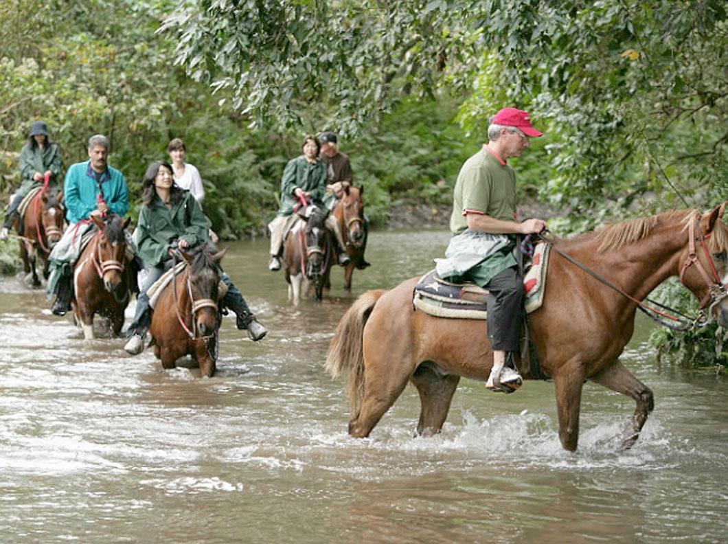 Product Waipio Valley Afternoon Horseback Adventure