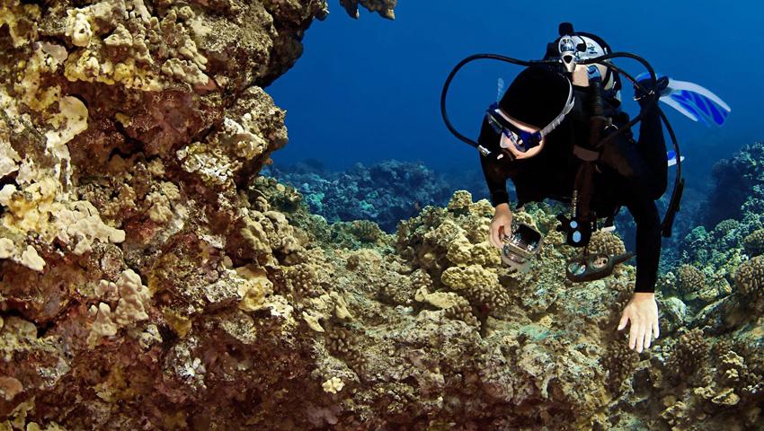 Product West Oahu Scuba Diving