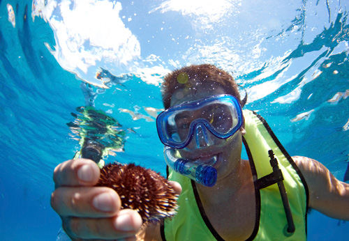 Product West Oahu Ocean Playground Afternoon Snorkel
