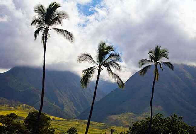 M1 Haleakala 1 Day