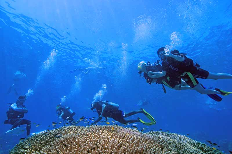 Product Great Barrier Reef - Intro Dive