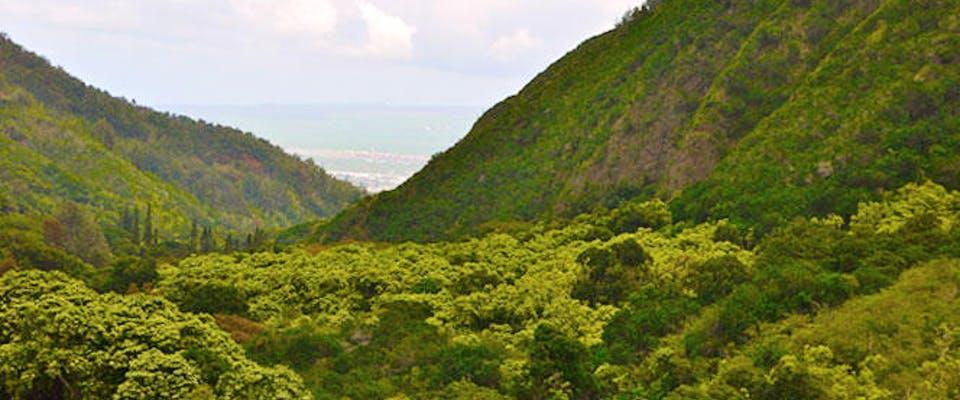 Shore Excursion-Best of Maui