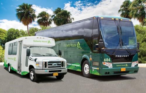Product Shared Mercedes Benz Shuttle: Honolulu International Airport (HNL)
