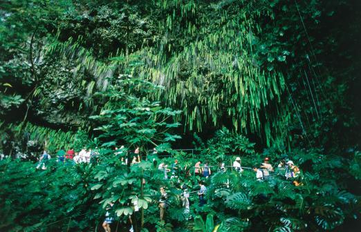 Kauai - Waimea & Fern Grotto