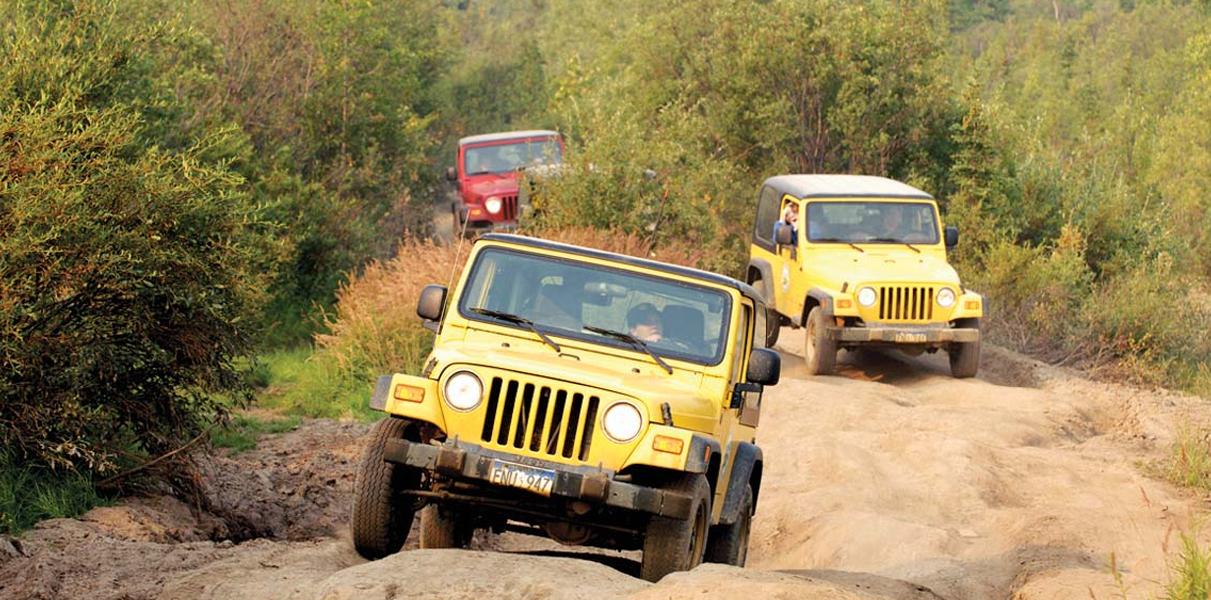Product Safari Jeep 4X4 Adventure