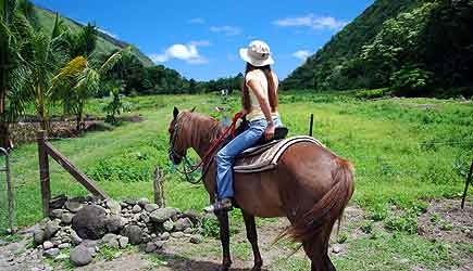 Waipio Valley Morning Horseback Adventure