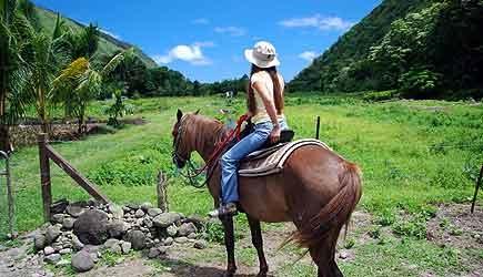 Product Waipio Valley Morning Horseback Adventure
