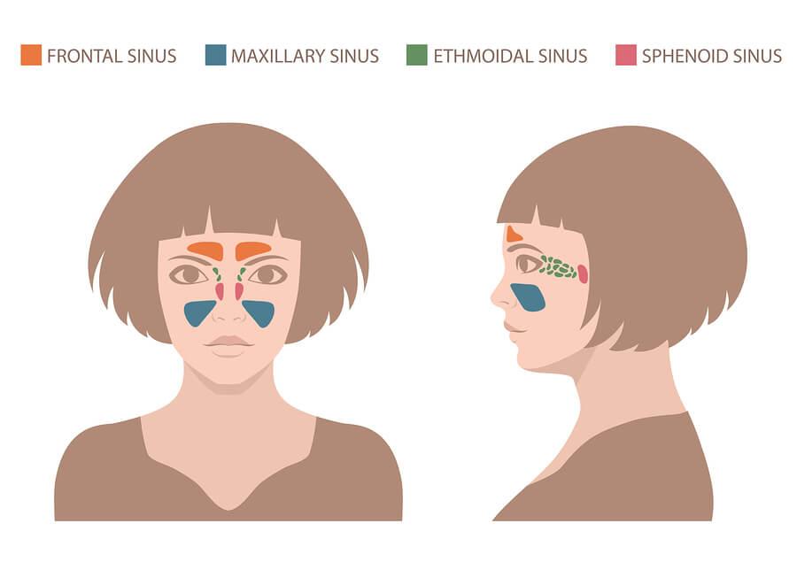 Antibiotics for Sinus Infection | PlushCare