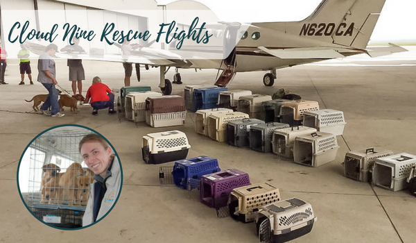 HURRICANE HARVEY Grant Spotlight: Cloud Nine Rescue Flights