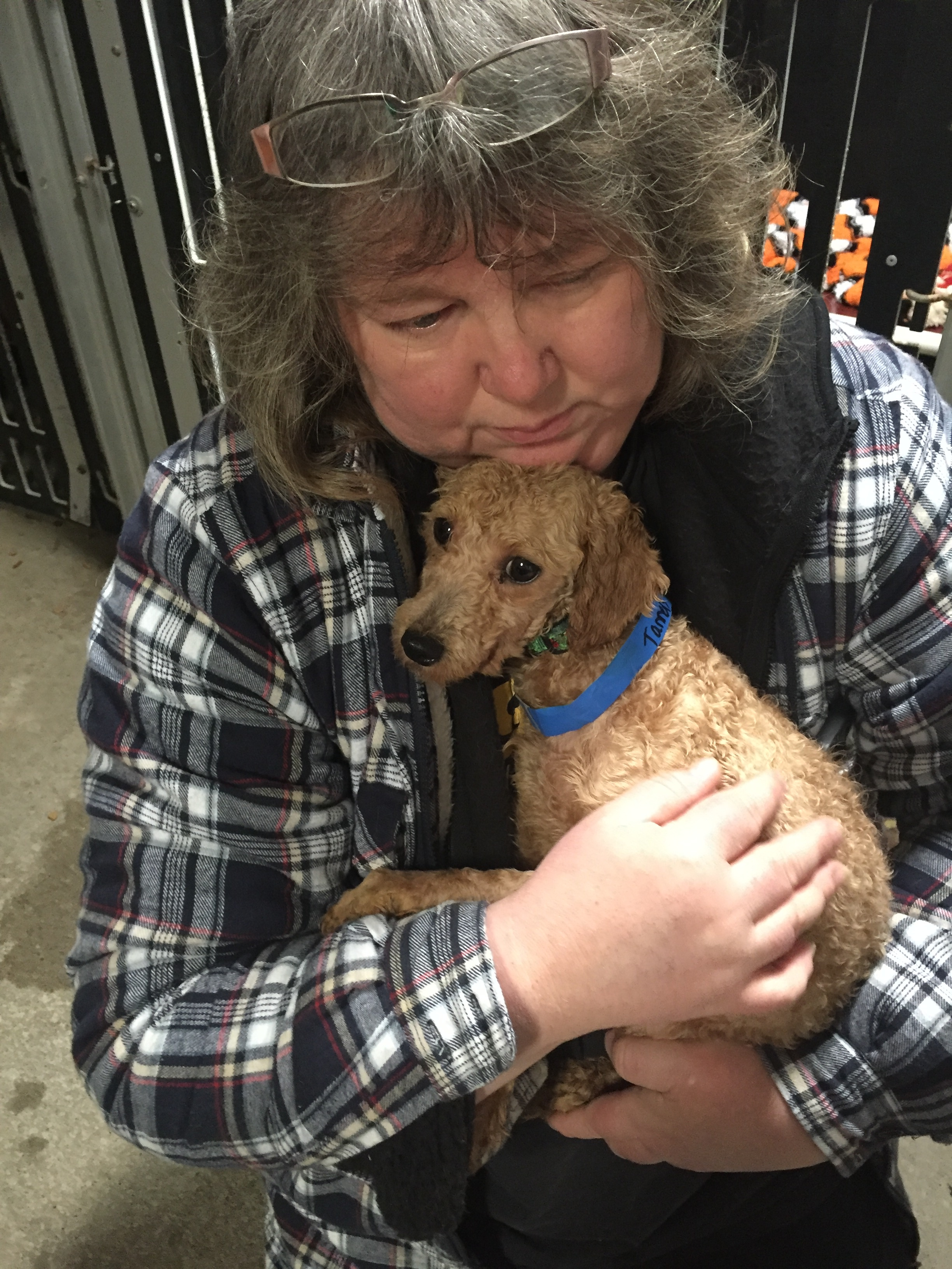 Puppy Mill Survivor Lucky's Strength & Recovery