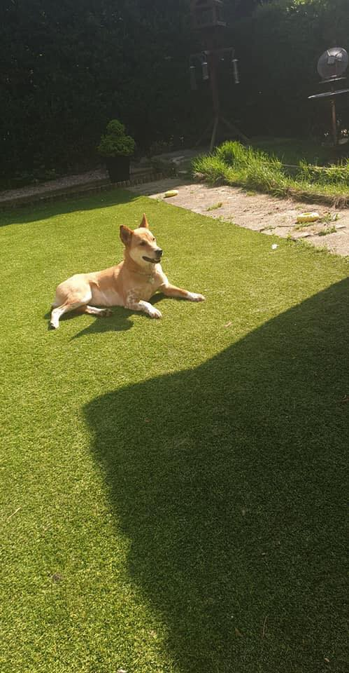 Sweet Baby Somsi Finds Happiness In The UK