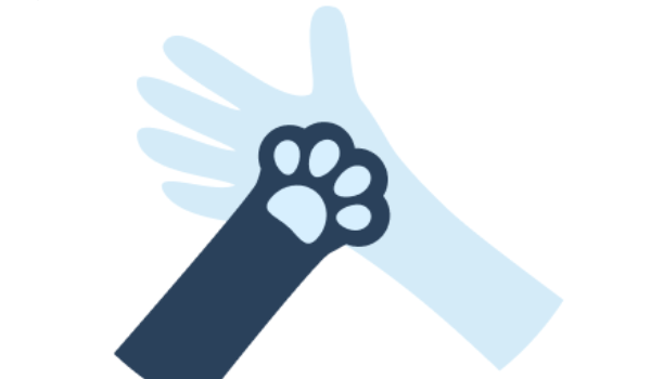 Southern California Bulldog Rescue (SCBR)