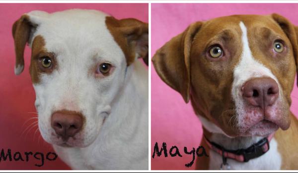 Margo and Maya
