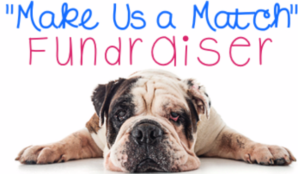 SCBR Summer Matching Fund Drive