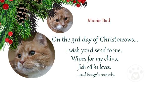 Minnie Bird