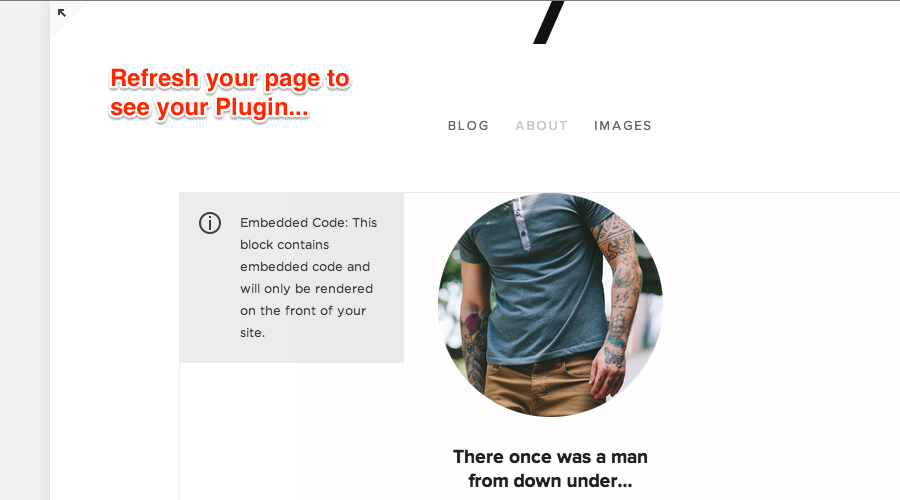 Pop-up Plugin