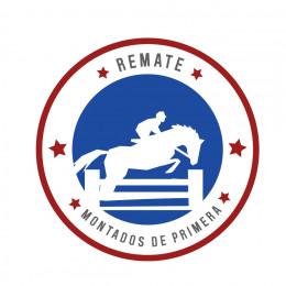 "Remate ""MONTADOS DE PRIMERA"""