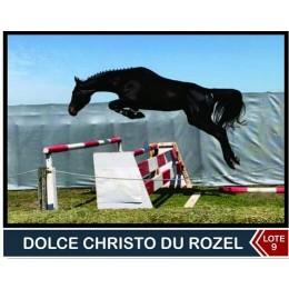 Lote 9: Dolce Christo Du Rozel