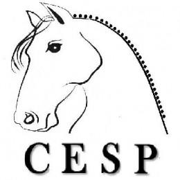 CESP Caballos en Training