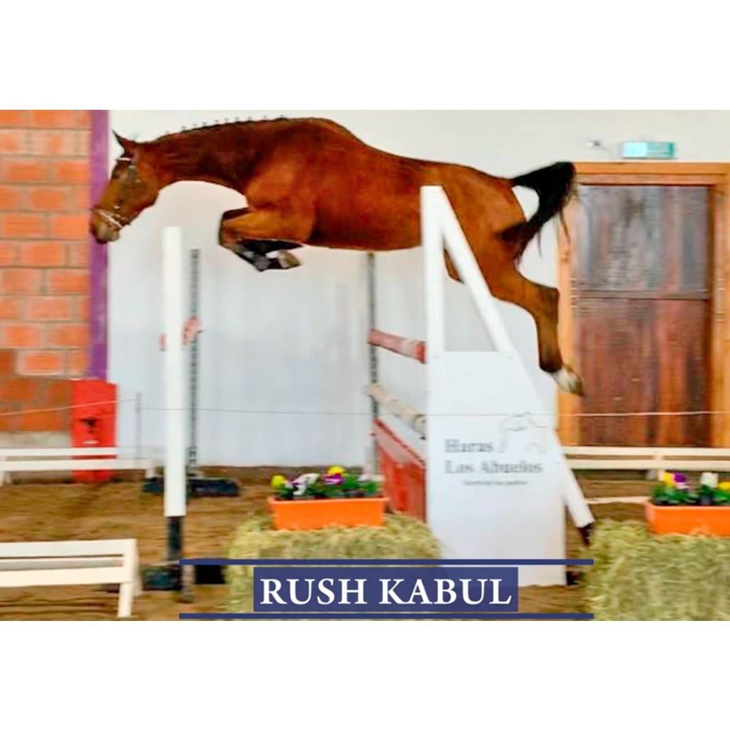 Lote 5:Rush Kabul