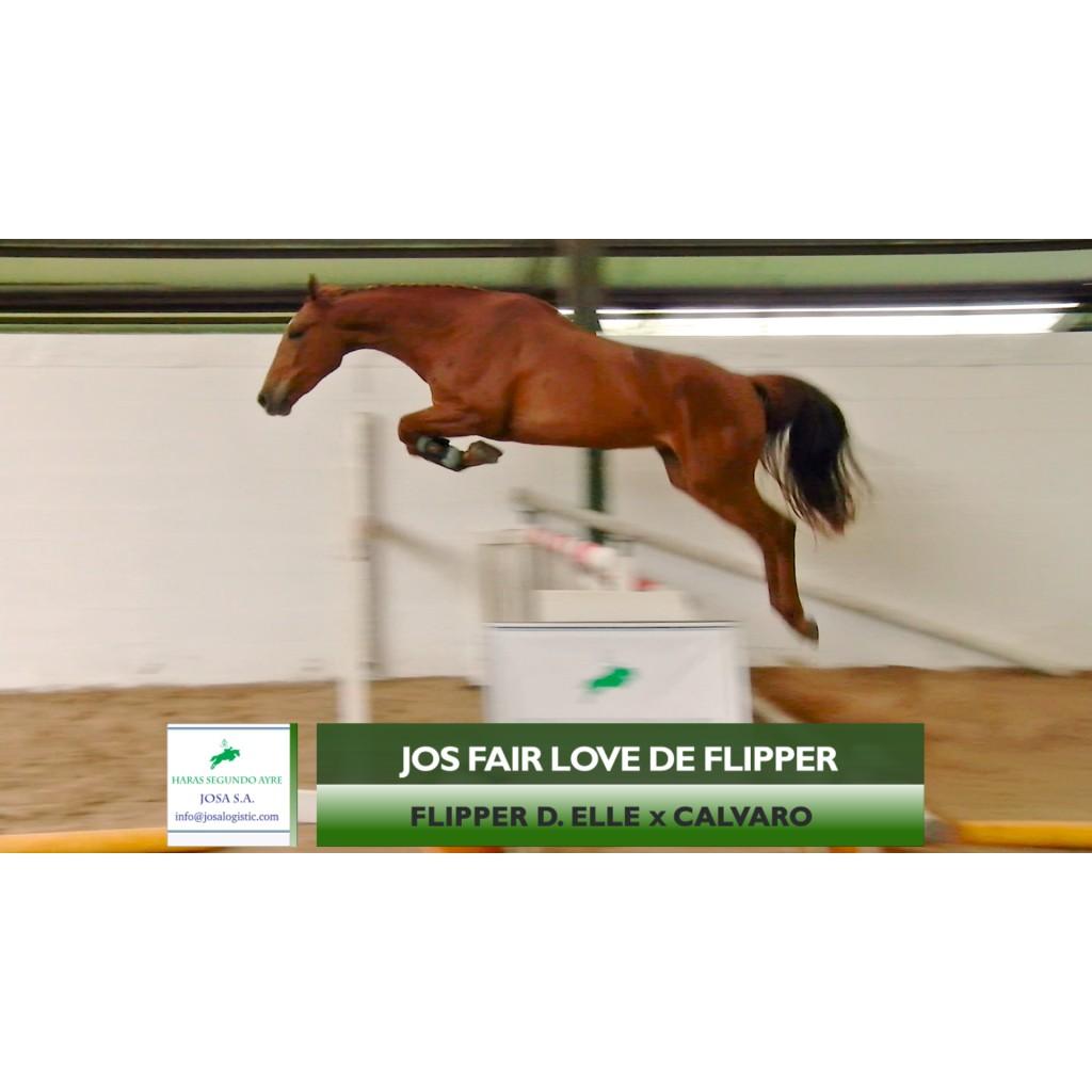 Lote 9: Jos Fair Love