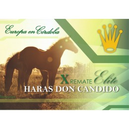Remate Haras Don Candido