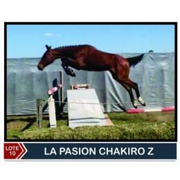 Lote 10: La Pasion Chakito