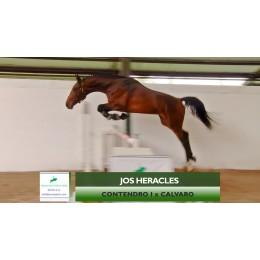 Lote 2: Jos Heracles