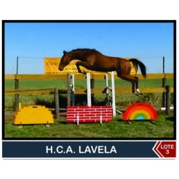 Lote 3: H.C.A Lavela