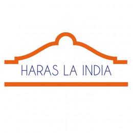 Remate Haras LA INDIA 2021