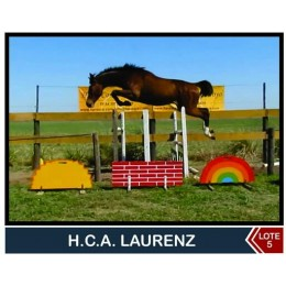 Lote 5: H.C.A Laurenz