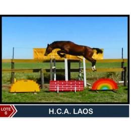 Lote 6: H.C.A Laos