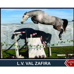 Lote 9: L.V. Val Zafira