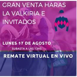 HARAS LA VALKIRIA E INVITADOS