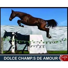 Lote 7: Dolce Champs de Amour