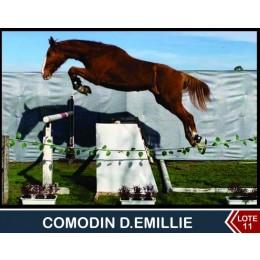 Lote 11: Comodin D.Emillie