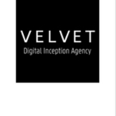 Velvet logo for org profile jpeg