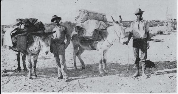 Carl Eytel with pack burros belonging to George Wharton James, an author, and Lea Van Anderson, a friend.