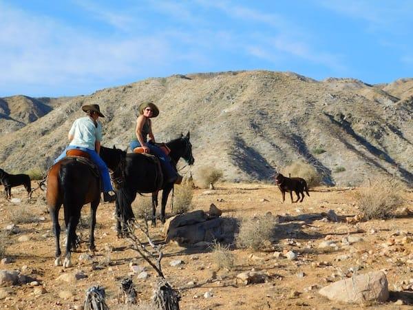 Coyote Ridge Stables