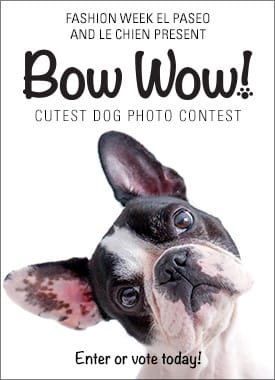 Bow Wow Fasion Week - Cutest Pet Contest