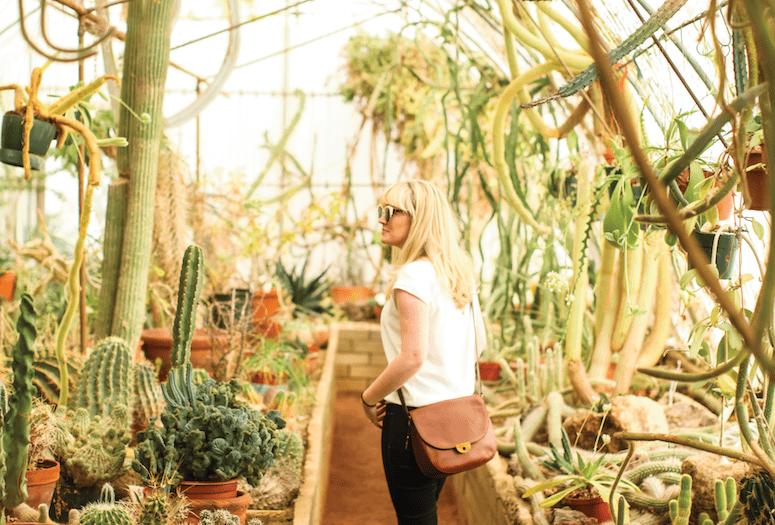 palm-springs-weekend