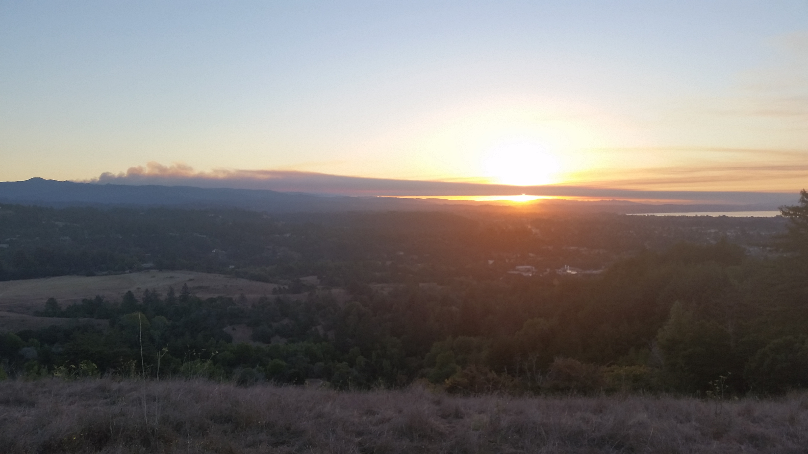 Santa Cruz Loma Prieta Fire