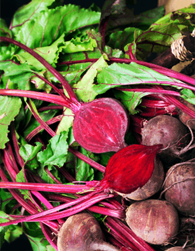 beets-nutrition